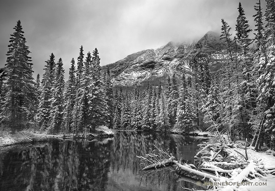 During a light late spring snowfall the water is still and the surroundings quiet. - Canada Photography