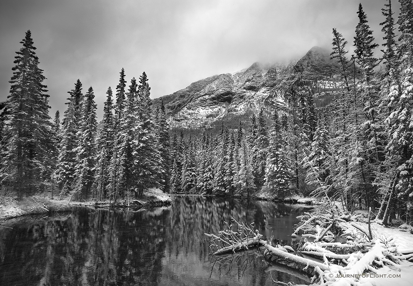 During a light late spring snowfall the water is still and the surroundings quiet. - Canada Picture