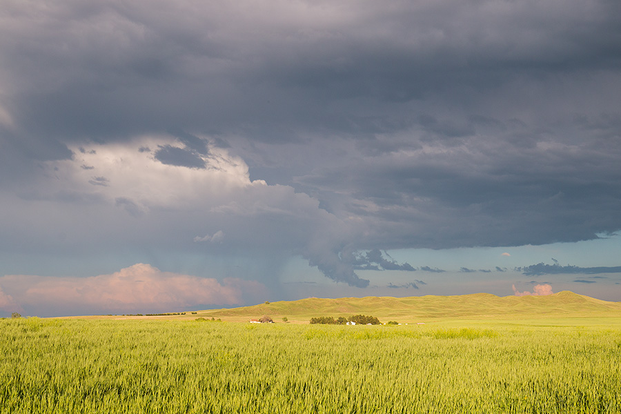 Storm clouds gather over a wheatfield nestled in the sandhills of western Nebraska. - Sandhills Photography