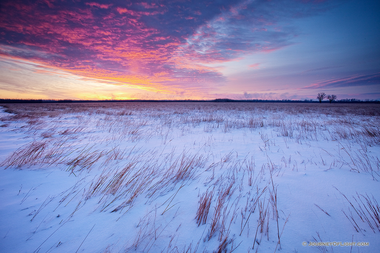 On a cold, early January morning, a snow covered prairie at Boyer Chute National Wildilfe Refuge is greated with a beautiful sunrise.  Due to the very low temperatures, on the horizon a light pillar is visible where in the location the sun will eventually rise. - Boyer Chute Picture