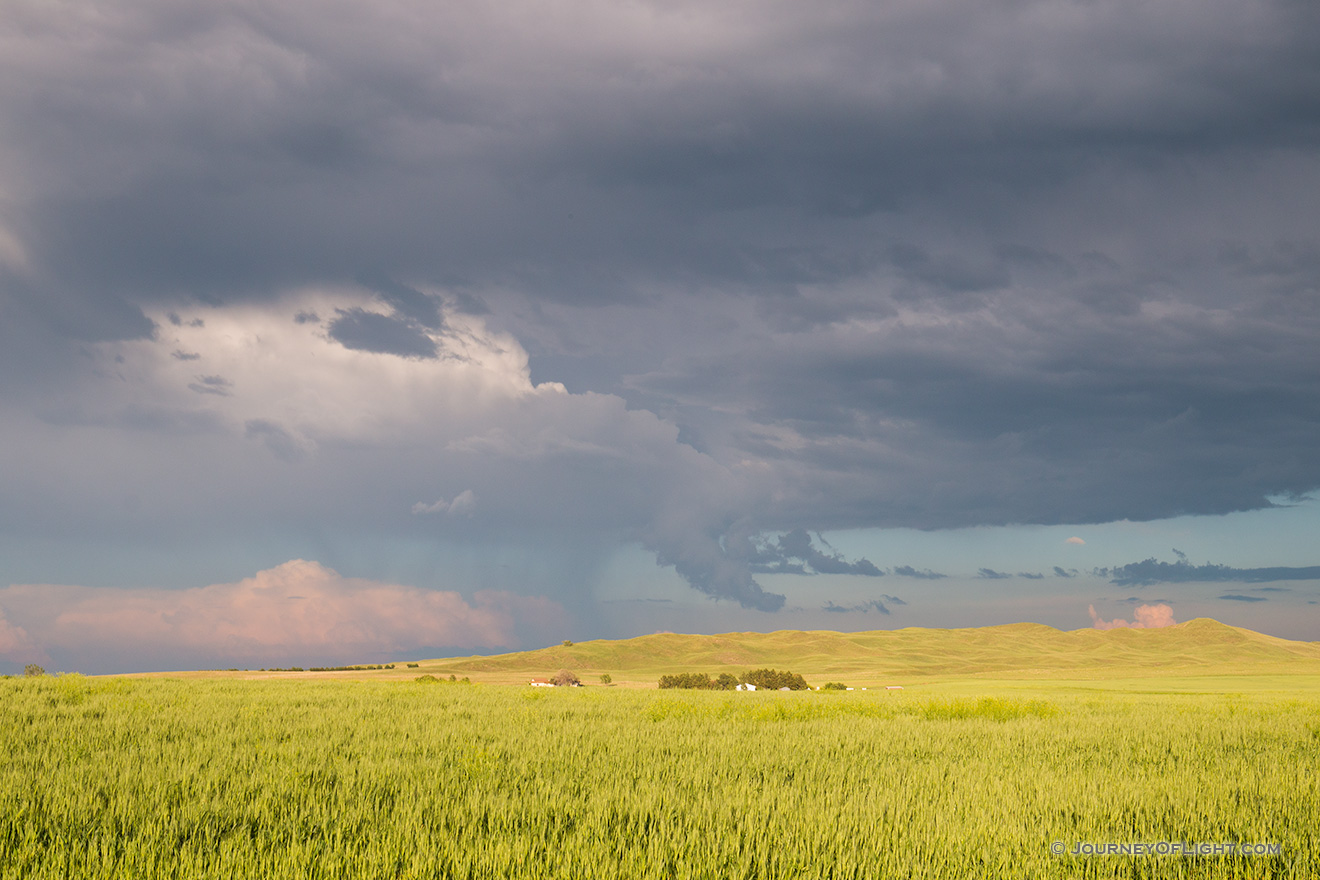 Storm clouds gather over a wheatfield nestled in the sandhills of western Nebraska. - Sandhills Picture